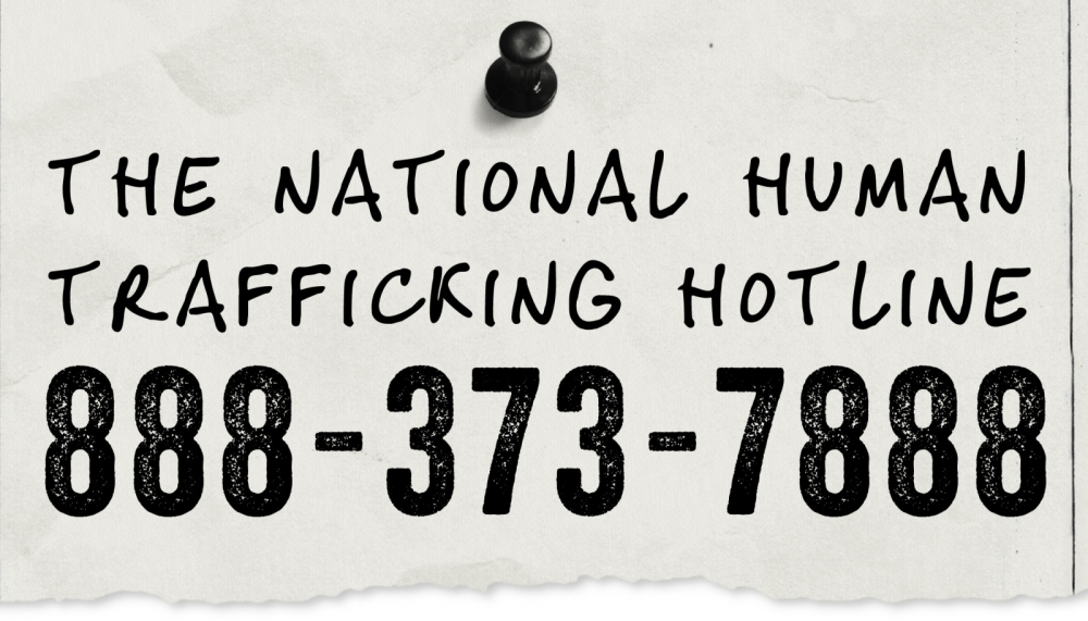 sex hotline jobs from home